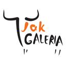 logo-galeria-jak